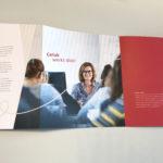 De merkbrochures voor Driessen en IJk